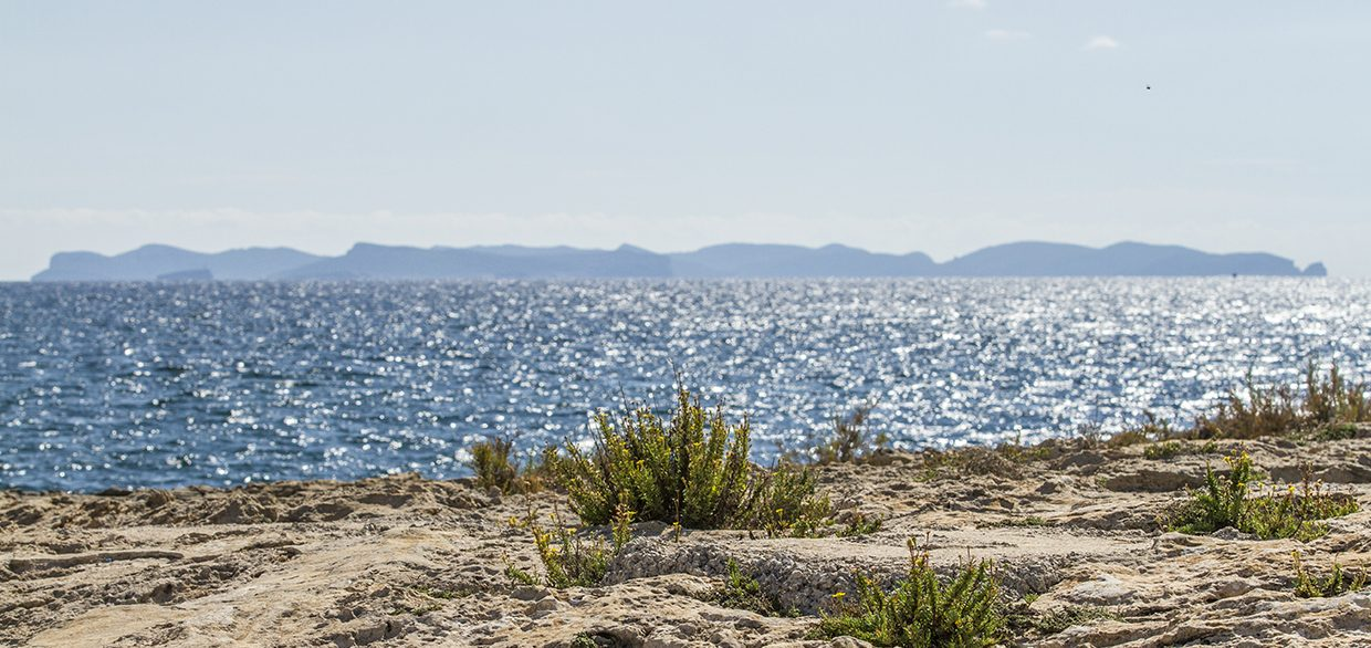 Cabrera-from-Colonia-Sant-Jordi-1240x586