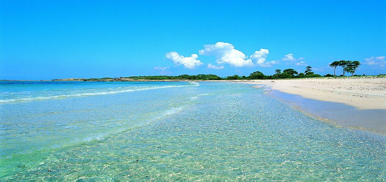Colonia Sant Jordi Playa Es Caragol - copia
